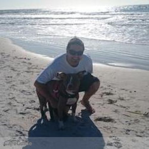 Pet Care Provider Brian H's Profile Picture