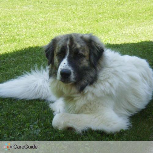 Pet Care Provider Lori Anne's Profile Picture