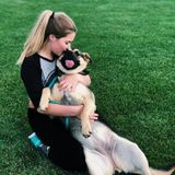 Positive And Motivated House And Pet Sitter! Huge Animal Lover.