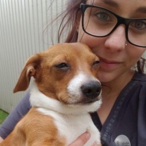 Pet Care Provider Marise G's Profile Picture