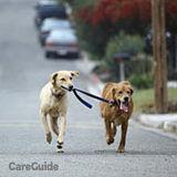 Dog Walker, Pet Sitter in Leduc
