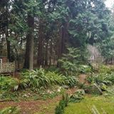 Stay at a park in Point Roberts this spring