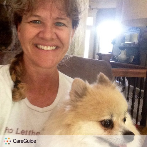 Pet Care Provider Tracy Martin's Profile Picture