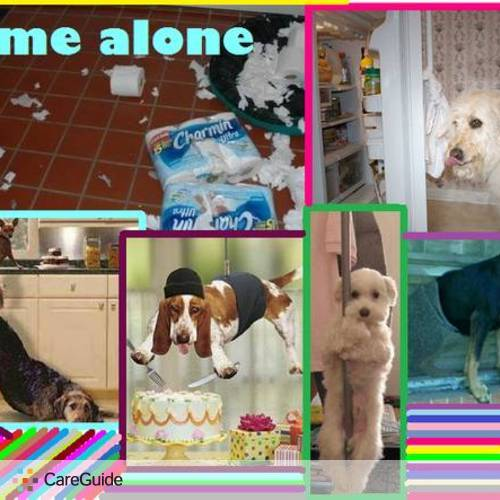 Pet Care Provider Claudia Benavides's Profile Picture