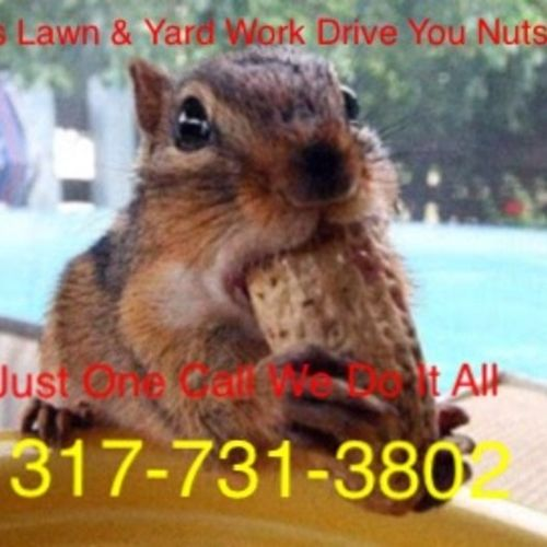 Does Maintaining your lawn & landscape drive you nuts ?