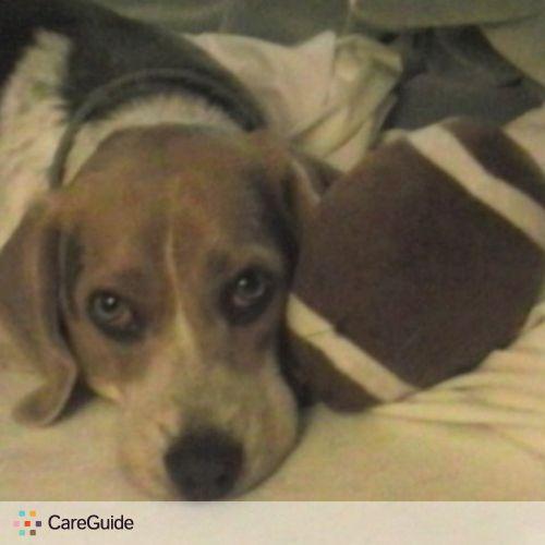 Pet Care Job Cathy Conard's Profile Picture