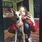 Part Time Student and Pet Sitter, Located in Boynton Beach, Florida