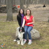 Dog Walker, Pet Sitter in Barrie