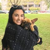 SU Undergrad Student - Animal Lover and Experienced Sitter