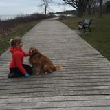 Dog Walker, Pet Sitter in St. Catharines