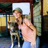 Happy Animals Happy Life !