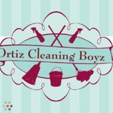 House Cleaning Company, House Sitter in Lyndhurst