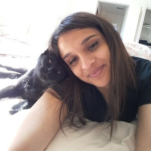 Pet Care Provider Krishna Patel Gallery Image 2