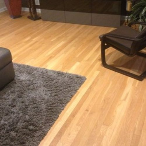 Housekeeper Provider North Jersey Clean Maid Gallery Image 1