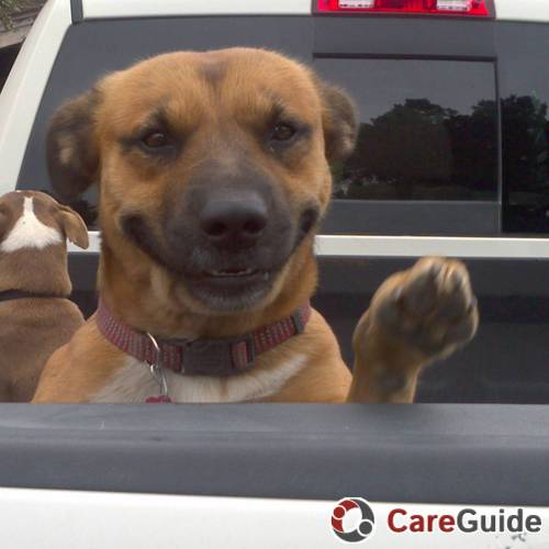Pet Care Provider Cyndi Campbell's Profile Picture