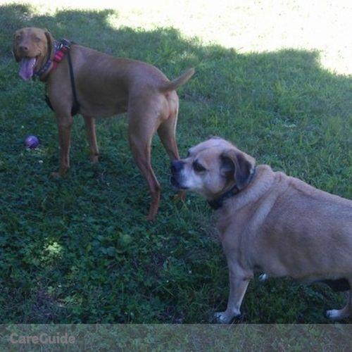 Pet Care Provider Krista Cognat's Profile Picture