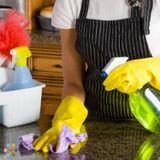 Housekeeper, House Sitter in Shreveport