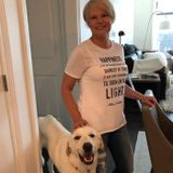 Bonded, Insured & Certified in First Aid & CPR for Pets