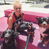 Experienced Downtown Toronto Dog-Walker - Flexible Schedule :)