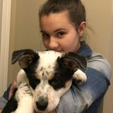 Dog or Cat care in Spruce Grove & Stony Plain,Alberta