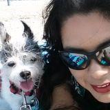 Great Animal Caregiver in Monterey Park