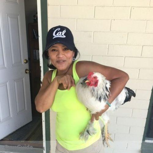 Pet Care Provider Nancy Martinez's Profile Picture