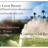 Sunshine Lawn Beauty L