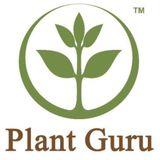 Plant G