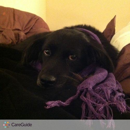 Pet Care Provider Susan Clark's Profile Picture