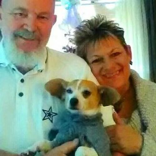 Pet Care Provider Carol H's Profile Picture