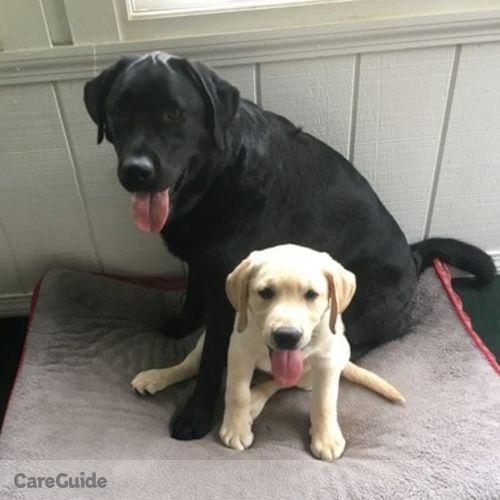 Pet Care Provider Marie Burns's Profile Picture