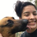 For Hire: Passionate Pet Sitter in Kingsville, Texas