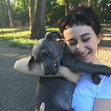 Dedicated Pet Sitter and dog walker in Saratoga Springs, New York