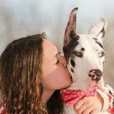 Dog Walker, Pet Sitter in Maple Grove