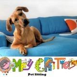Dog Walker, Pet Sitter in Pembroke Pines