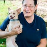 Dog Walker, Pet Sitter in Scottsdale