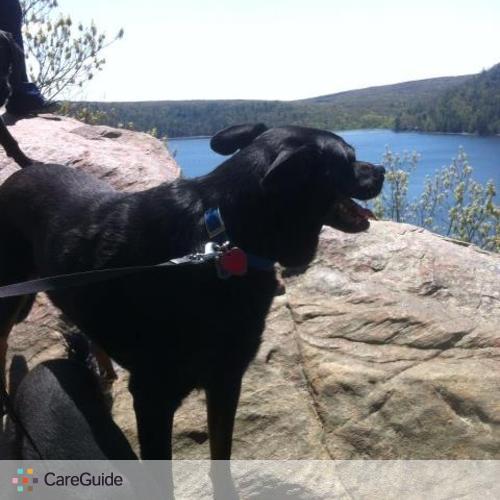 Pet Care Provider Sara Hennecke's Profile Picture
