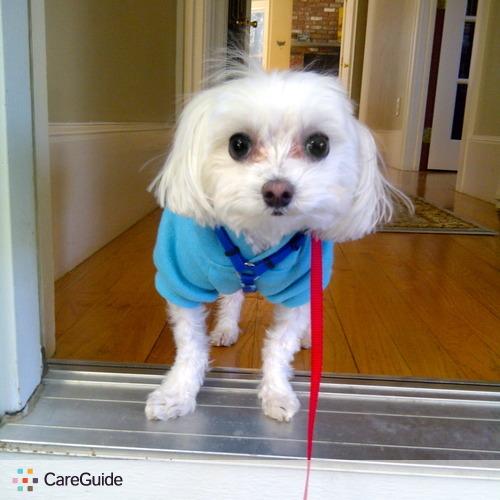 Pet Care Provider Carol Gomes's Profile Picture