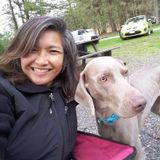 Experienced and Reliable House and Pet Sitter