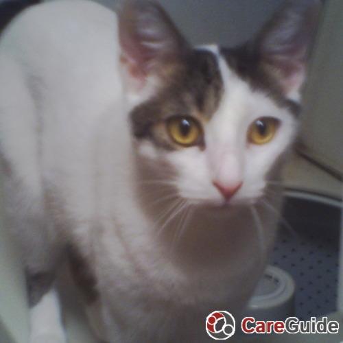 Pet Care Provider Paula Holcomb's Profile Picture