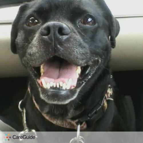 Pet Care Job Rachel L's Profile Picture