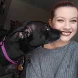 Available: Caring Pet Sitter in Saint Joseph, Missouri