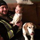 Dog Walker Job, Pet Sitter Job in Didsbury