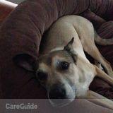 Dog Walker Job in Mount Vernon