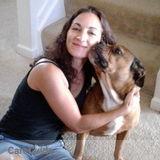 Passionate, Loving, Dog Walker