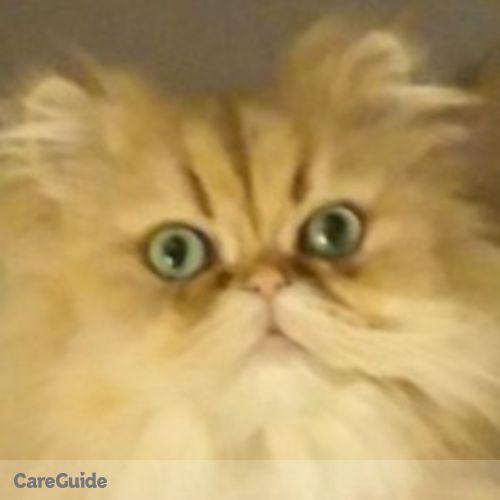 Pet Care Job Kim O'Day's Profile Picture