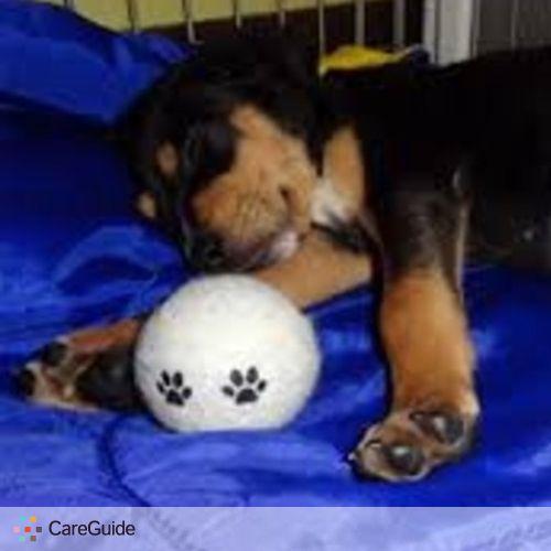 Pet Care Provider Safe Haven's Profile Picture