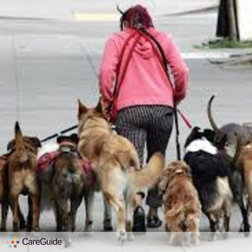 Pet Care Provider Sierra G's Profile Picture