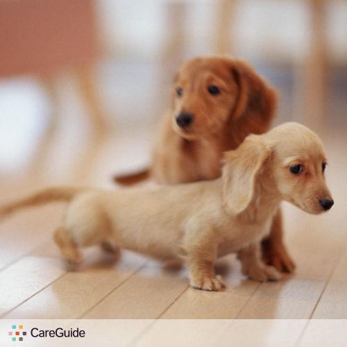 Pet Care Provider Caren Lasota's Profile Picture