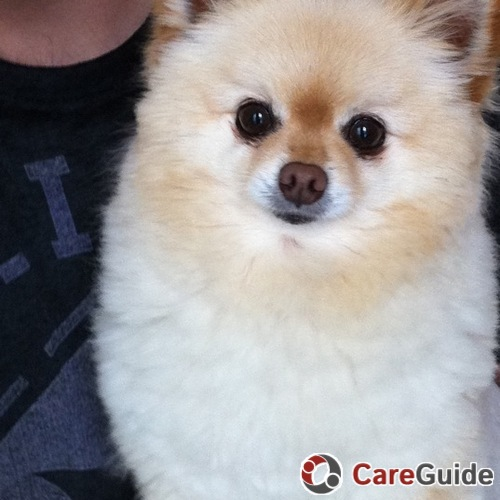 Pet Care Provider Leslie Weiss's Profile Picture
